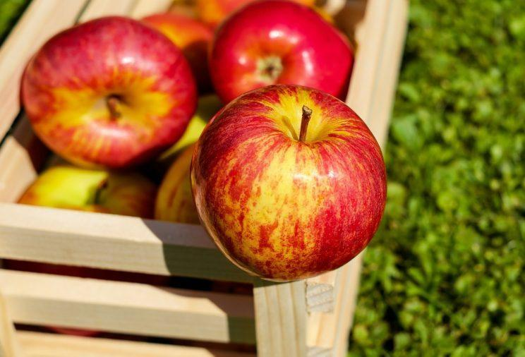 Could apples hold the secret to losing weight? [Photo: Pixabay via Pexels]