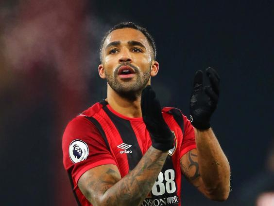 Callum Wilson ended his goal drought in Brighton's win against Bournemouth (PA)