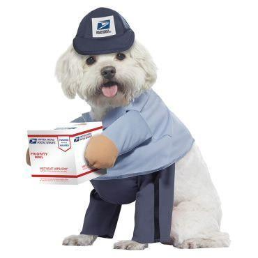 "<p>usps.com</p><p><strong>$20.00</strong></p><p><a href=""https://store.usps.com/store/product/stamp-gifts/us-mail-carrier-dog-costume-P_843201"" rel=""nofollow noopener"" target=""_blank"" data-ylk=""slk:Shop Now"" class=""link rapid-noclick-resp"">Shop Now</a></p><p>We think the charms of this particular item speak for themselves. </p>"