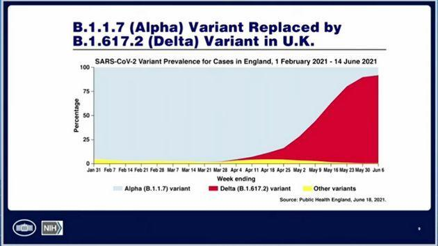 Delta variant cases in the U.K., seen in the graph in red, are also dominating all other variants. (Photo: WH.gov)