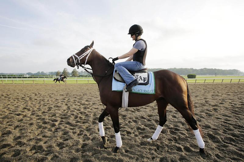 Palace Malice enters the track at Belmont Park for a morning workout Thursday, June 6, 2013 in Elmont, N.Y. Palace Malice is entered in Saturday's Belmont Stakes horse race. (AP Photo/Mark Lennihan)