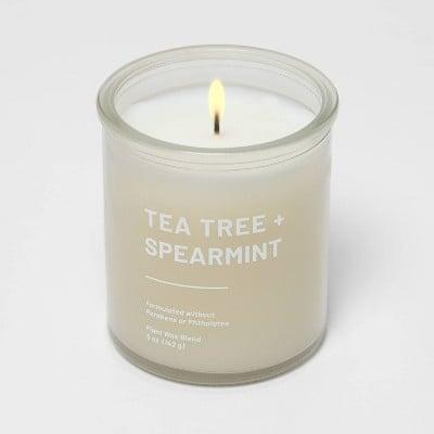 <p><span>Tea Tree and Spearmint Glass Candle</span> ($5)</p>