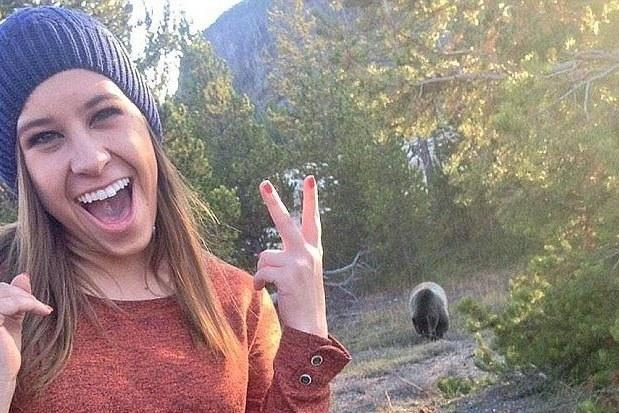 The dangerous trend of bear selfies started in 2014 (Twitter/Coconutchanel)