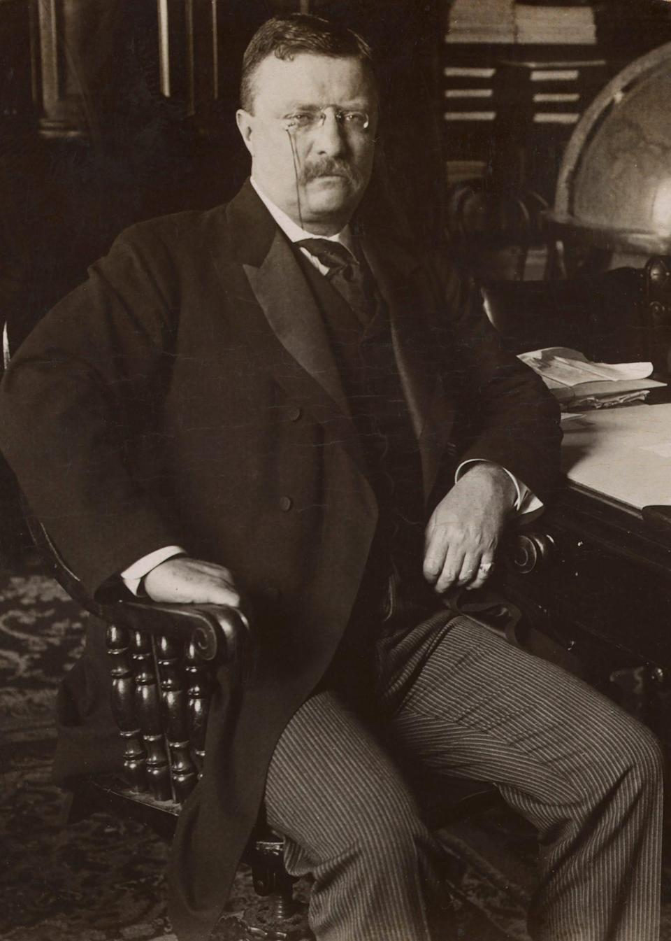 """<p>The White House has had many names over the years — including the """"President's House"""" and the """"Executive Mansion"""" — but it has exclusively been called the White House since 1901, when President Theodore Roosevelt decided the unique name would help distinguish it from other government buildings. </p>"""