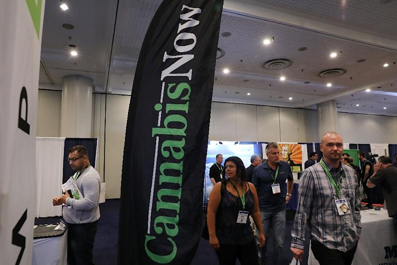 Around 120 people have attended workshops on investing in cannabis at The Cannabis World Congress Conference in New York (AFP Photo/SPENCER PLATT)
