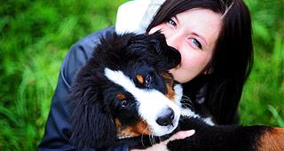 Dog with owner copyright LovelyColorPhoto/Shutterstock.com