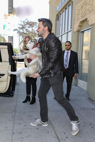 The 'Justice League' star now has another super cute canine companion in his life.
