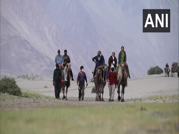 Tourists enjoying camel rides in Ladakh after the tourism reopens by the administration