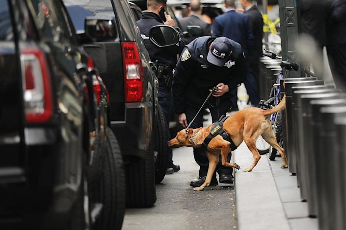 <p>A Police bomb sniffing dog is deployed outside of the Time Warner Center after an explosive device was found this morning on Oct. 24, 2018 in New York City. (Photo: Spencer Platt/Getty Images) </p>