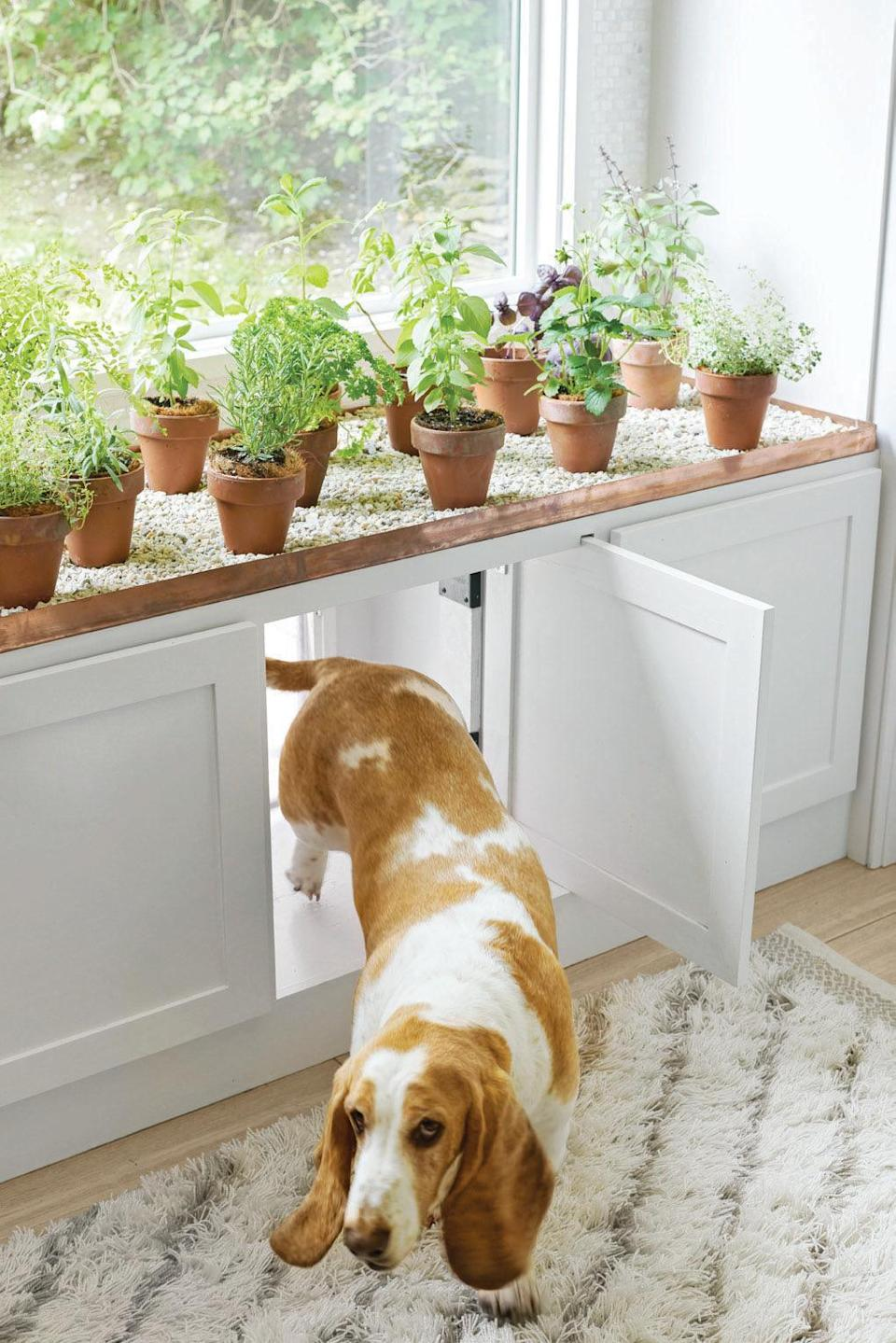 """<p>The immediate guilt after keeping your dog out of the """"no-zones"""" can feel like a break-up. Maybe they knocked over a vase, or expertly snagged a few bites of your dinner, or even tracked mud all over the living room (you need a <a href=""""https://www.housebeautiful.com/shopping/home-accessories/g23303205/machine-washable-rugs/"""" rel=""""nofollow noopener"""" target=""""_blank"""" data-ylk=""""slk:machine-washable rug"""" class=""""link rapid-noclick-resp"""">machine-washable rug</a>). Whatever it is, we've all been there. Say goodbye to the """"dog house"""" with the best pet gates that not only look amazing but allow your dog to stay inside the home—yes, you can keep boundaries in style! If you spend most of your day holding your breath waiting to hear an impending crash, found chic pet gates that get the job done without sacrificing style. Finally, your <a href=""""https://www.housebeautiful.com/lifestyle/a26291747/pet-proof-fabrics/"""" rel=""""nofollow noopener"""" target=""""_blank"""" data-ylk=""""slk:favorite couch"""" class=""""link rapid-noclick-resp"""">favorite couch</a> will go untouched from wandering paws and you can store your beautiful antiques in the dining room! Acrylic, wood, metal—this list has them all. Shop below for the answer you may have been overlooking. Pet gates can <em>totally</em> blend with your decor.</p>"""