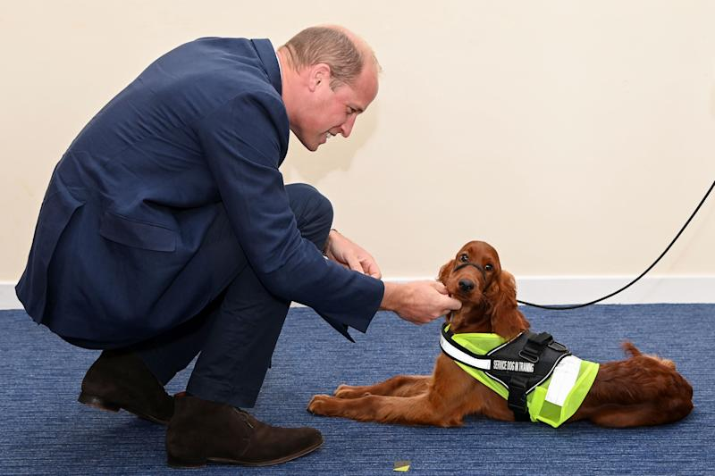 BELFAST, NORTHERN IRELAND - SEPTEMBER: Prince William, Duke of Cambridge meets meets Tara, a 5 month old Irish Red Setter, trained as a PTSD training dog as he attends a PSNI Wellbeing Volunteer Training course, including representatives from the Ambulance and Fire and Rescue services, to talk about mental health support within the emergency services at PSNI Garnerville on September 09, 2020 in Belfast, Northern Ireland. (Photo by Tim Rooke - WPA -Pool/Getty Images)