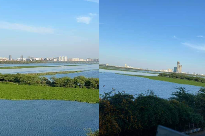 After Visible Himalayas from Jalandhar, Pictures of 'Cleaner' Yamuna are Going Viral