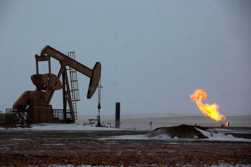 U.S. crude output rises in February, Texas production eases - EIA
