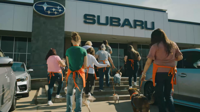 Through the Subaru Loves Pets initiative, Subaru and its retailers have supported the health, rescue, transport and adoption of more than 250,000 animals.