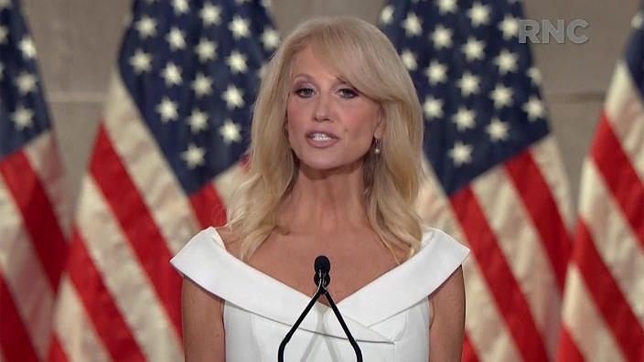 Kelleyanne Conway speaks during the virtual Republican National Convention on August 26, 2020. (via Reuters TV)