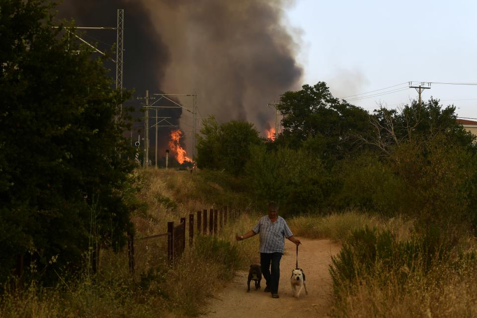 A man holds two dogs as the flames burn near the railway lines in Tatoi area, northern Athens, Greece, Tuesday, Aug. 3, 2021. Greece Tuesday grappled with the worst heatwave in decades that strained the national power supply and fueled wildfires near Athens and elsewhere in southern Greece. As the heat wave scorching the eastern Mediterranean intensified, temperatures reached 42 degrees Celsius (107.6 Fahrenheit) in parts of the Greek capital. (AP Photo/Michael Varaklas)