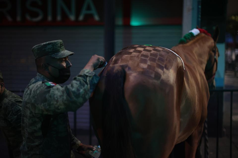 VARIOUS CITIES, MEXICO - SEPTEMBER 16: A Mexican soldier prepares a horse during the Independence Day military parade at Zocalo Square on September 16, 2020 in Various Cities, Mexico. This year El Zocalo remains closed for general public due to coronavirus restrictions. Every September 16 Mexico celebrates the beginning of the revolution uprising of 1810. (Photo by Hector Vivas/Getty Images)