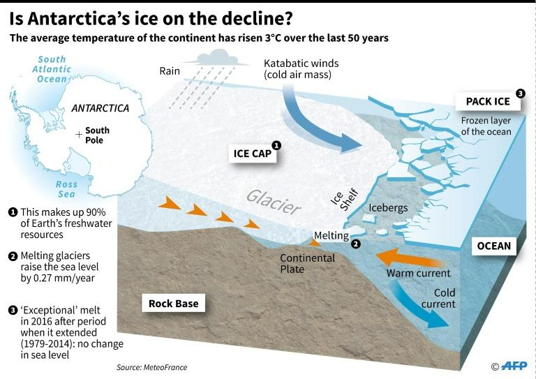 Cutaway of Antarctica with data on the glaciers and ice shelf