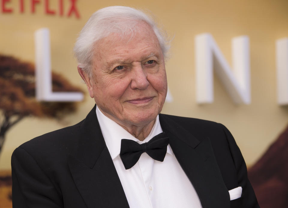 Sir David Attenborough poses for photographers upon arrival for the premiere of a new series of Our Planet, at the Natural History Museum in central London, Tuesday, April 4, 2019. (Photo by Joel C Ryan/Invision/AP)