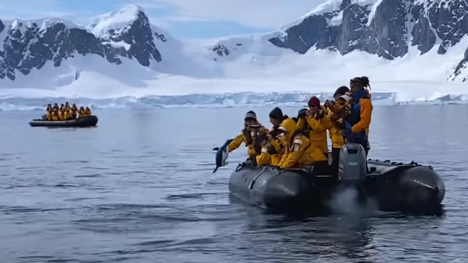 Penguin jumping onto a sightseeing boat to escape killer whales