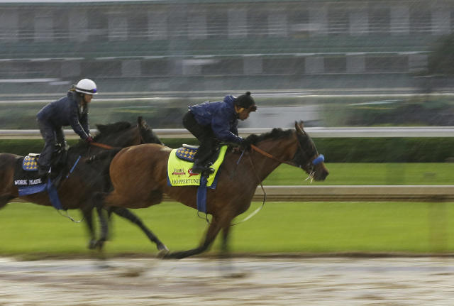 An exercise rider takes Kentucky Derby hopeful Hoppertunity for a morning workout at Churchill Downs Monday, April 28, 2014, in Louisville, Ky. (AP Photo/Morry Gash)