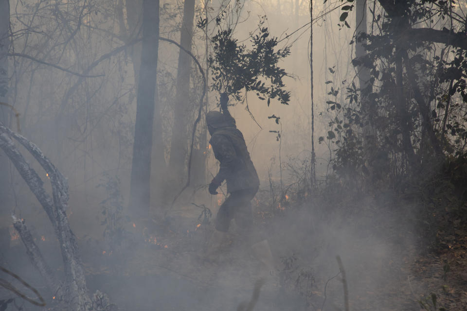 Alexandre Moura, a resident of the Capao neighborhood, in the city of Barao de Melgaco, in Mato Grosso, Brazil, on September 24, 2020 uses tree branches for auxiliary firefighters near his home. The Pantanal is experiencing the worst drought in the last 50 years. (Photo by Ernesto Carrico/NurPhoto via Getty Images)
