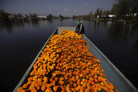 Mexican wrestler Mister Jerry floats with a boatful of marigold flowers in the famous floating gardens of Xochimilco, on the outskirts of Mexico City, Wednesday, Oct. 14, 2020. The harvest of Mexican marigold flowers known as Cempasuchil in the Nahuatl language is done ahead of the Nov. 1, Day Of The Dead holiday. (AP Photo/Marco Ugarte)