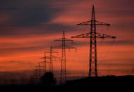 FILE PHOTO: High-voltage power lines are seen during sunset near Ulm