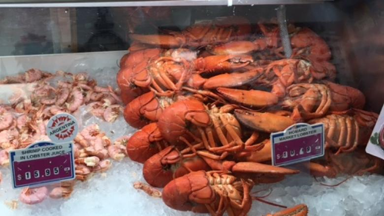 Lobster rules changing too fast, says P.E.I. MLA