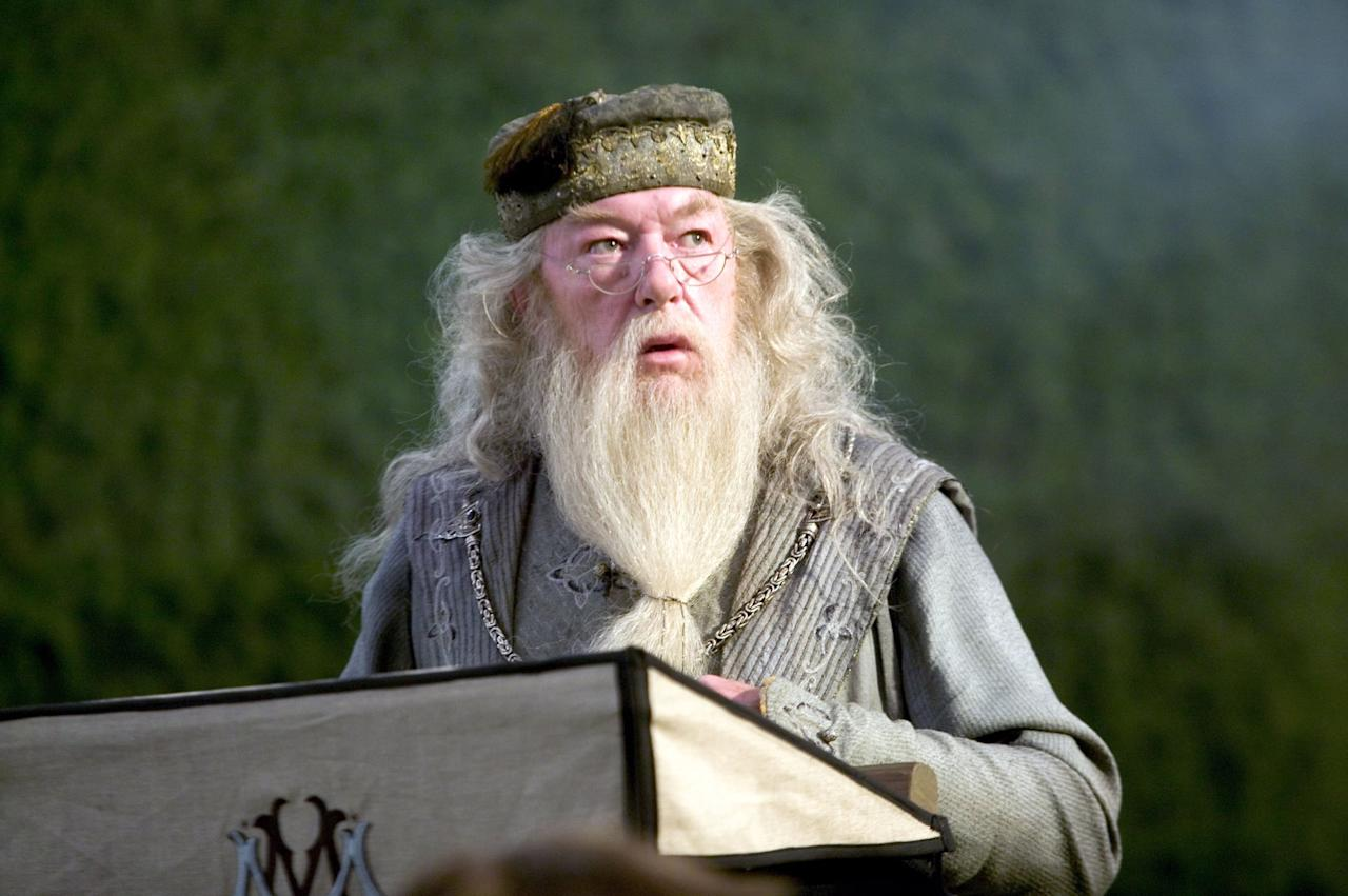 "<p>""It matters not what someone is born, but what they grow to be."" - <b>Harry Potter and the Goblet of Fire</b></p>"