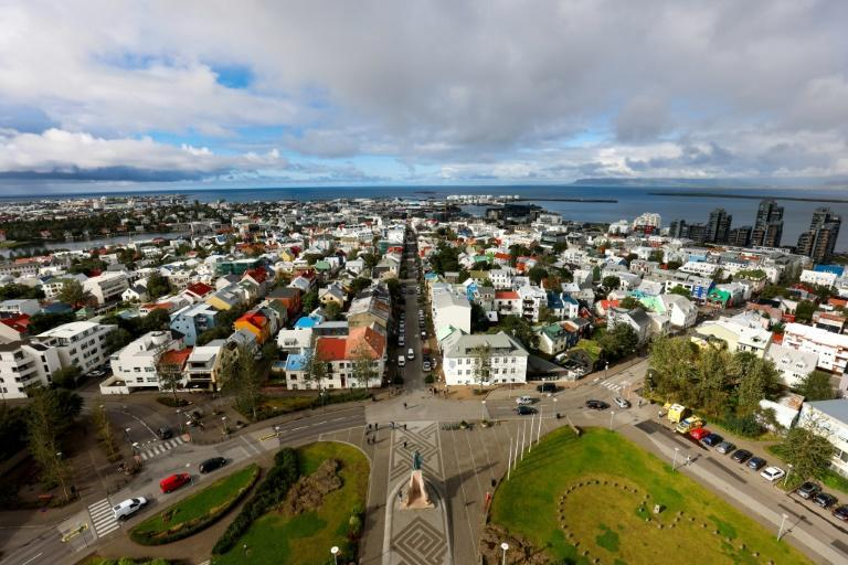 Opinion polls suggest Iceland's ruling left-right coalition will fail to win re-election (AFP/Odd ANDERSEN)