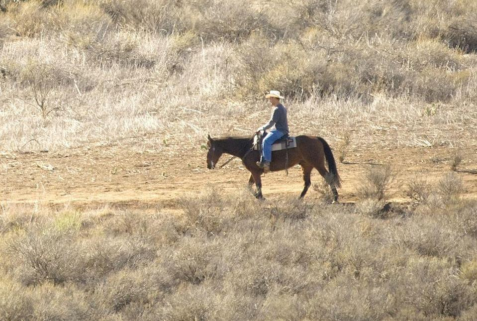 """<p>This one makes total sense: It's illegal to drink before riding a horse in Colorado. It's considered a <a href=""""https://www.9news.com/article/life/style/colorado-guide/9-weird-colorado-laws-that-are-still-on-the-books/73-d2c15c73-bc96-4a5b-b28d-45248c816d75"""" rel=""""nofollow noopener"""" target=""""_blank"""" data-ylk=""""slk:non-motorized vehicle"""" class=""""link rapid-noclick-resp"""">non-motorized vehicle</a>.</p>"""
