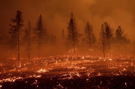 Embers blow across a field as the Sugar Fire, part of the Beckwourth Complex Fire, burns in Doyle, Calif., Friday, July 9, 2021. (AP Photo/Noah Berger)