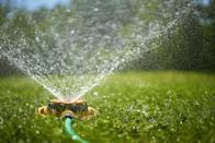 """<p>According to American Rivers, <a href=""""https://www.americanrivers.org/rivers/discover-your-river/top-10-ways-for-you-to-save-water-at-home/"""" class=""""link rapid-noclick-resp"""" rel=""""nofollow noopener"""" target=""""_blank"""" data-ylk=""""slk:30 to 60 percent of drinking water in homes is used to water yards and gardens"""">30 to 60 percent of drinking water in homes is used to water yards and gardens</a>. You can cut down on wasting this water by shortening the time you water your lawn or plants each day, watering fewer days a week, avoiding watering during peak periods, and making sure that your sprinkler is only hitting the necessary spots (i.e. no sidewalks!).</p>"""