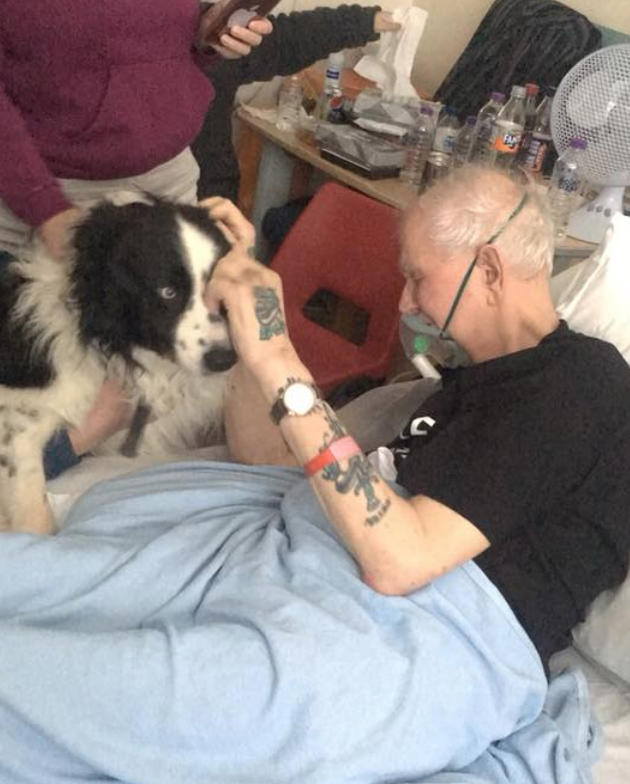 Dying Man Get's to See His Dog One Last Time