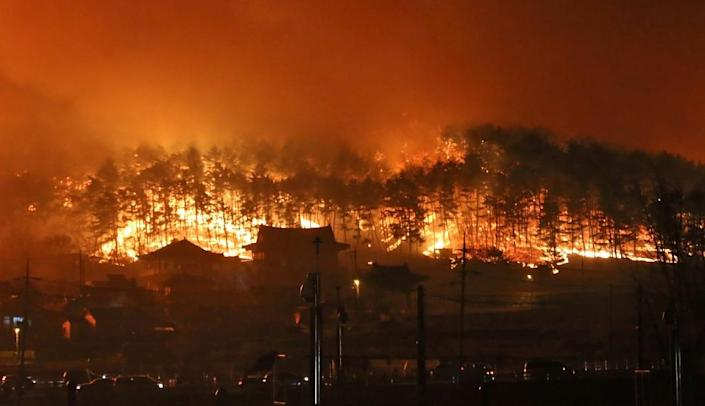 More than 870 fire engines and some 10,000 emergency personnel were dispatched to fight the blaze in Goseong (AFP Photo/)
