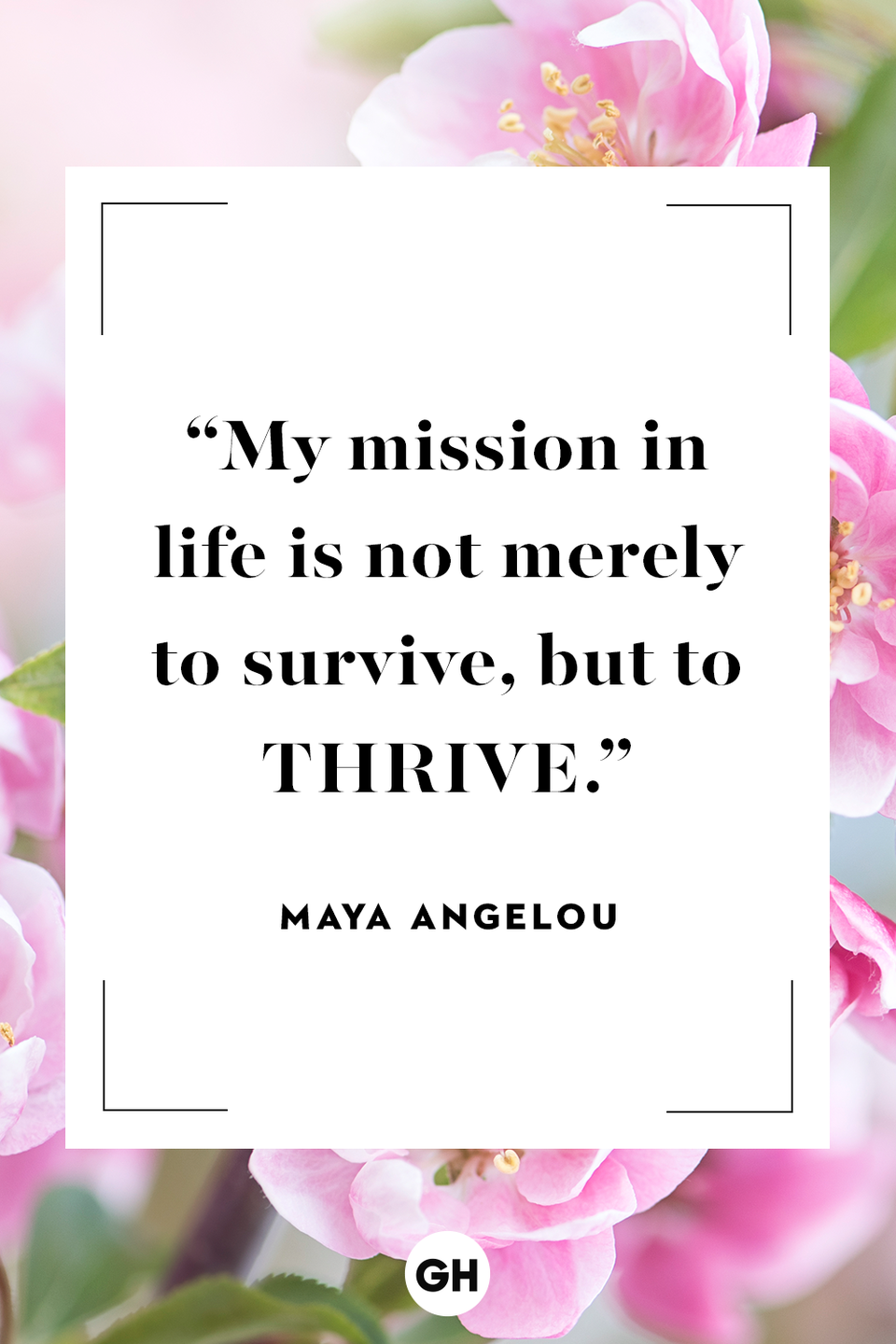 <p>My mission in life is not merely to survive, but to thrive.</p>