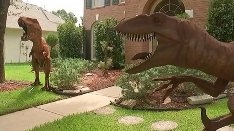Dinosaurs on Couple's Front Lawn Yard Turns Heads in Planned Community