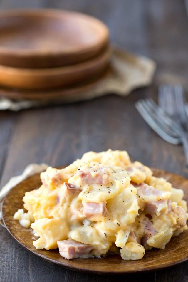 14 delicious leftover ham recipes to make after christmas for Hamilton beach pioneer woman slow cooker