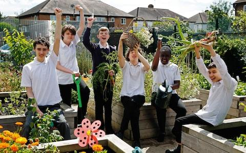 The children at Springhallow school with their raised beds - Credit: Luke MacGregor/RHS