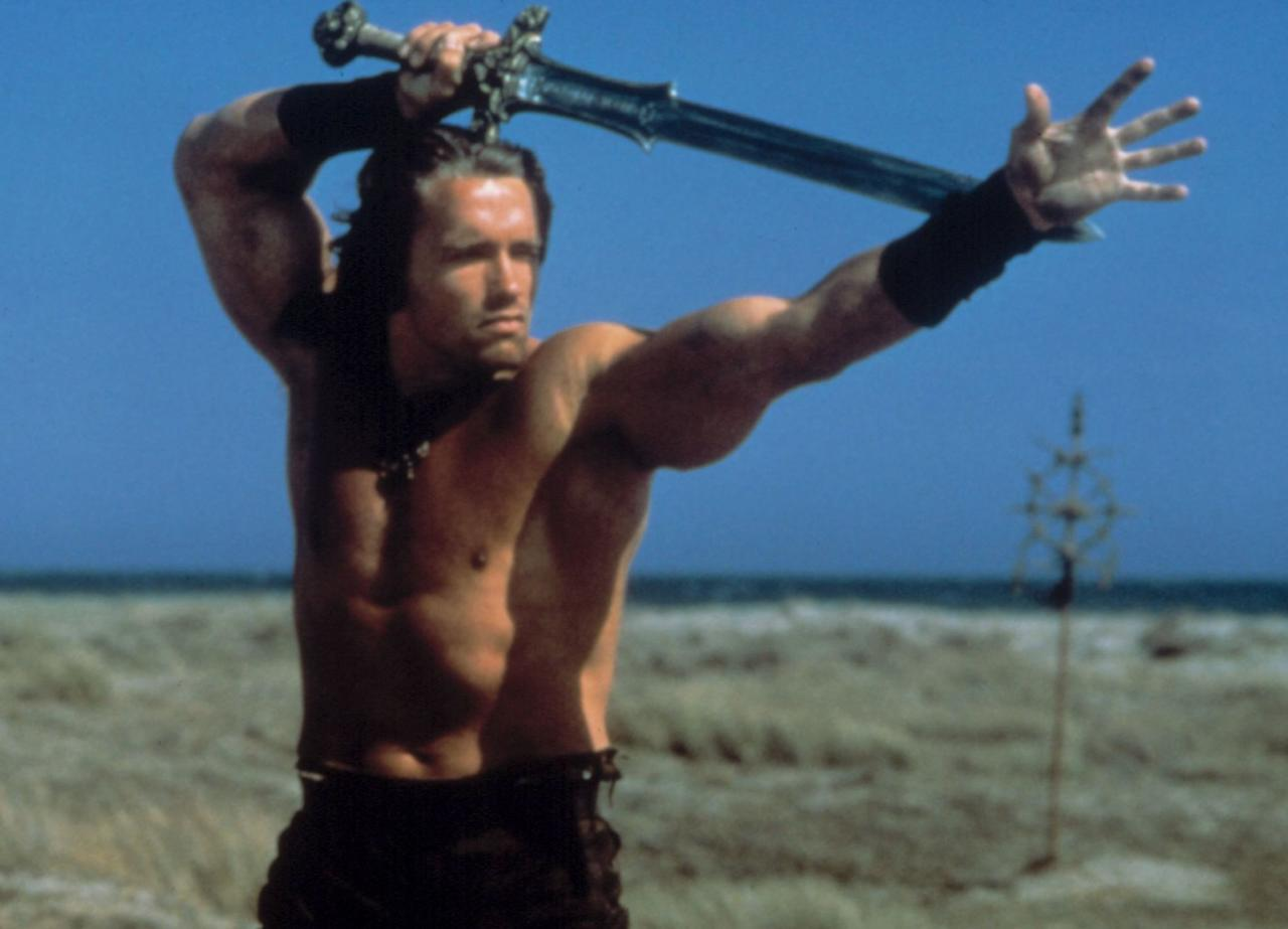 <p>Conan The Barbarian, End Of Days, The Last Action Hero, The 6th Day</p>