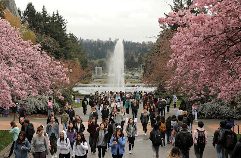 Students walk between classes near blooming cherry trees on the University of Washington campus, in Seattle. - 03 Apr 2019 | Ted S Warren/AP/Shutterstock—