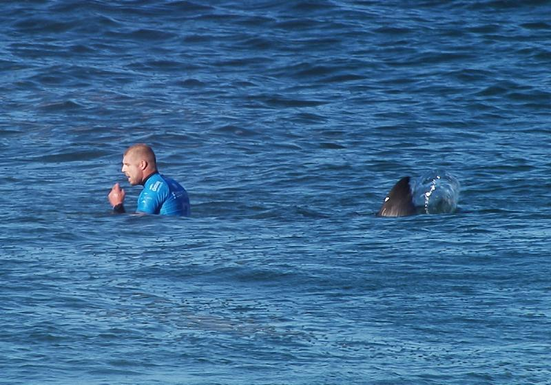 Australian surfer Mick Fanning shortly before being attacked by a shark during the Final of the JBay surf Open in Jeffreys Bay, South Africa in 2015