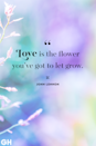 <p>Love is the flower you've got to let grow. </p>
