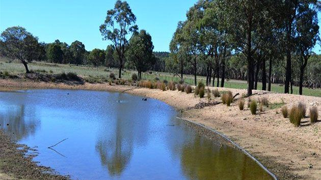 Along with the homestead and cottage are a large lock-up workshop, machinery sheds, steel stock yards and a hay shed - making the rural property an attractive potential hide-out for the wanted Stoccos. Photo: realestate.com.au