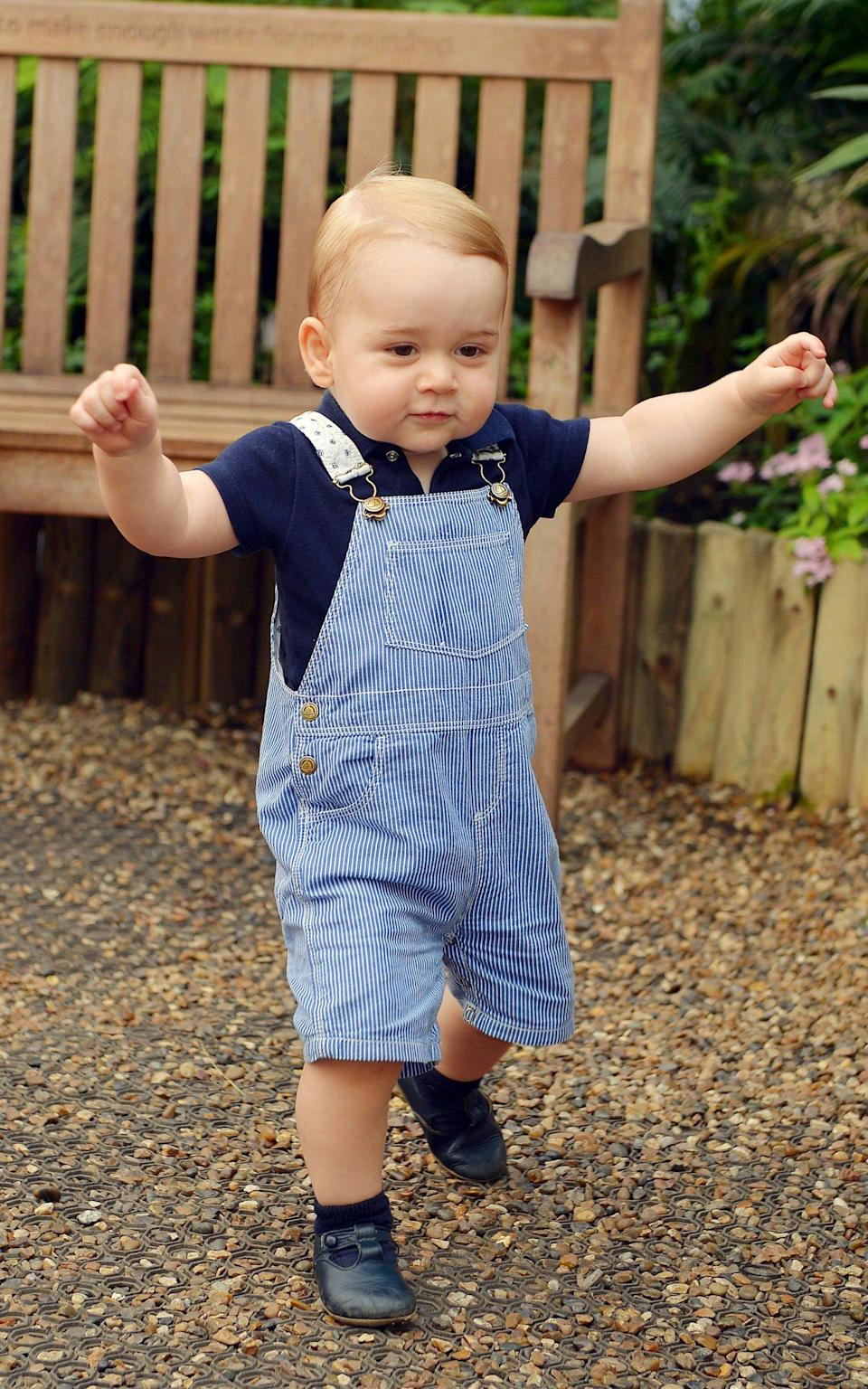 The photo taken to mark Prince George's first birthday - AFP