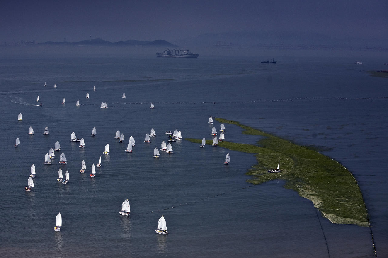 Sailing boats are pictured next to a patch of algae on the water of a bathing beach in Qingdao, Shandong province July 7, 2008. Thousands of Chinese troops and volunteers should clear unsightly algae from competition areas at the Qingdao Olympic sailing venue by Thursday, an official said.   REUTERS/Nir Elias