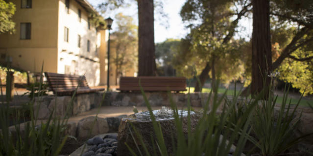 The dumpster site at Stanford University where Brock Turner sexually assaulted a woman has been turned into a quiet garden and memorial. (Photo: the Stanford Daily)