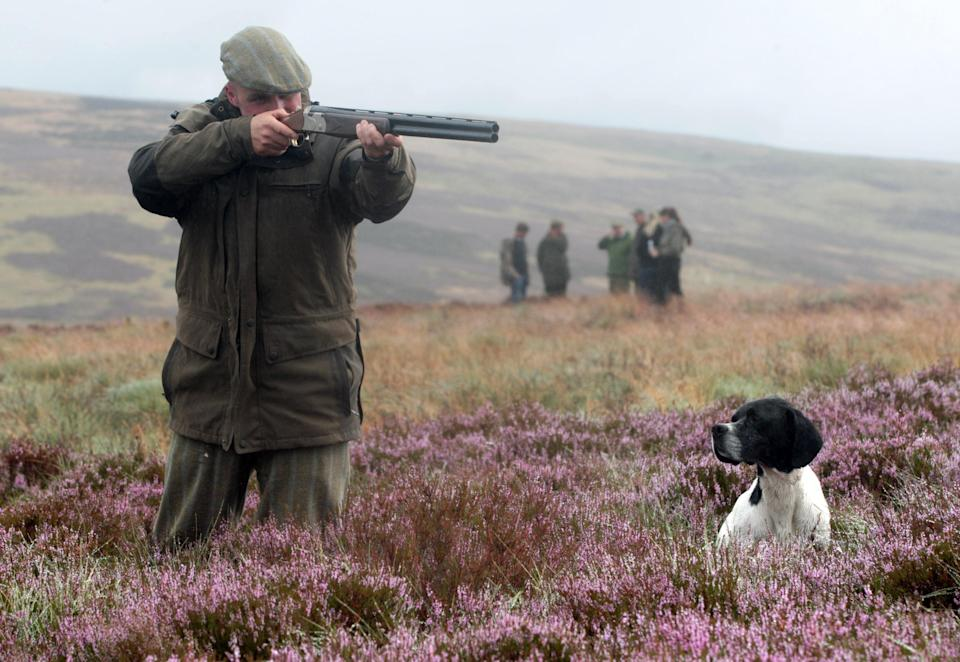 Huge swathes of national park are devoted to grouse shooting, according to Rewilding Britain (David Cheskin/PA) (PA Archive)