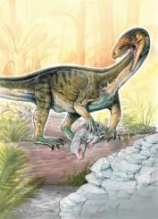 Dino ancestors looked like crocodiles: study